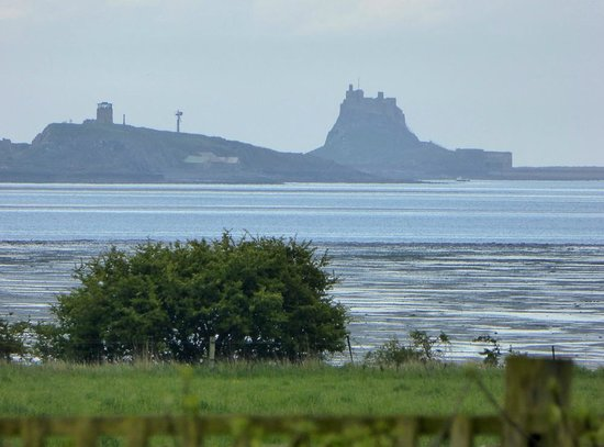 Fenham Farm Bed and Breakfast : View of Holy Island