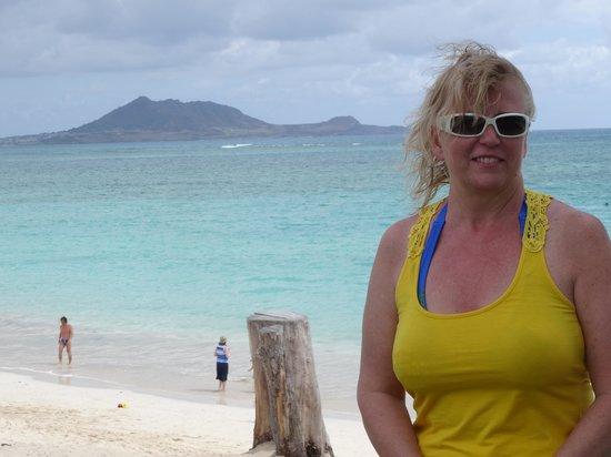 Kailua Beach Park : Beach