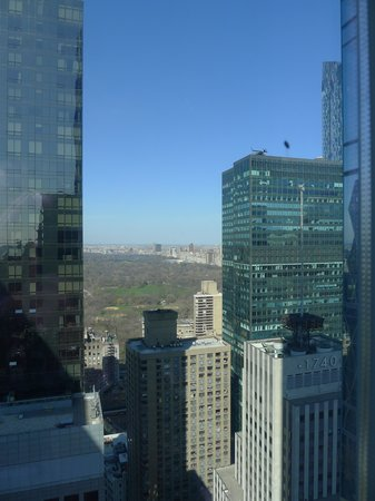 Courtyard by Marriott New York Manhattan/Central Park : View of Central Park through the buildings from our room