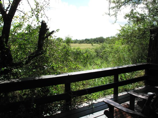 Sabi Sabi Selati Camp: View from the bungalow