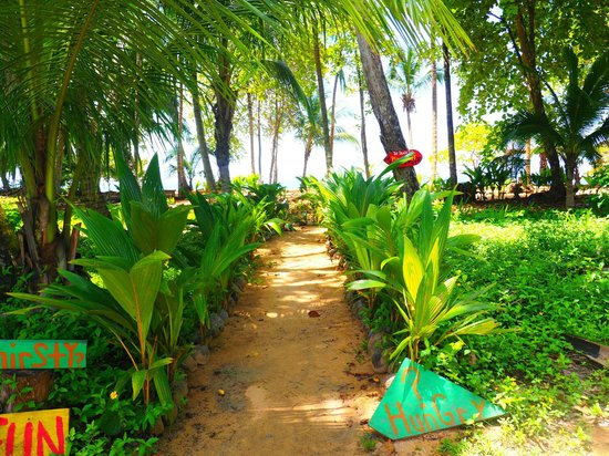 Island Plantation : Pathway to beach