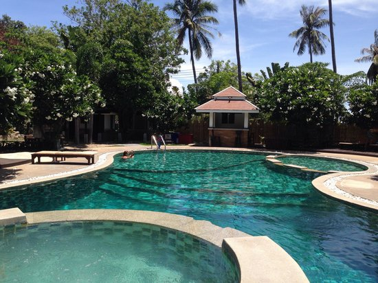 Ban's Diving Resort: Pool on hill side!