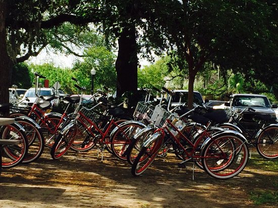 The American Bicycle Rental Company: Bikes resting while enjoying some beignets