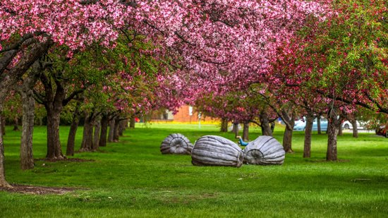 Grounds For Sculpture Hamilton Nj Top Tips Before You