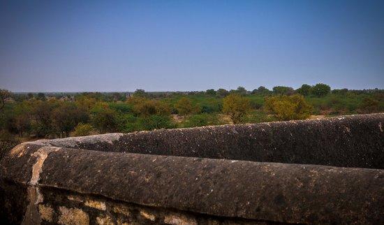 Chandelao Garh : Fin utsikt fra toppen av borgen