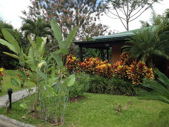 Arenal Manoa Hotel: I loved the lush, well kept gardens, and variety of flowers.