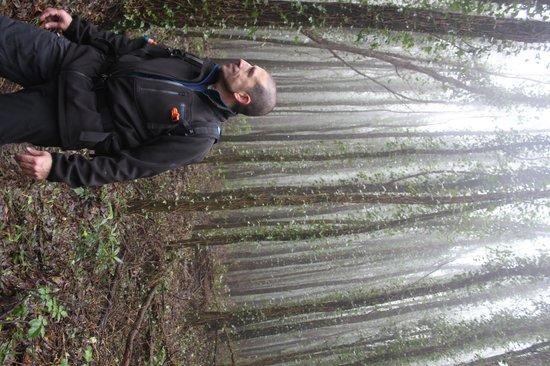 Walk Hike Portugal: Mysteries of Sintra