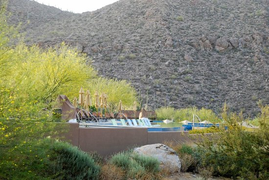 The Ritz-Carlton, Dove Mountain: View of one of the pools from a walking path