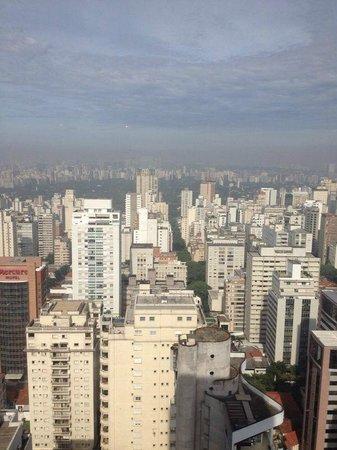 Renaissance Sao Paulo Hotel: Vista do Lounge