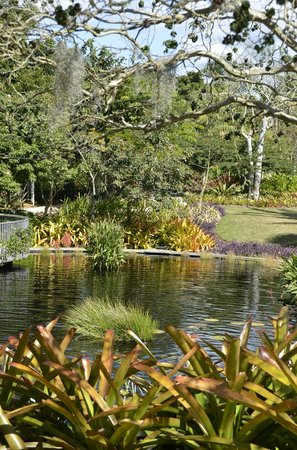 Naples Botanical Garden: garden view