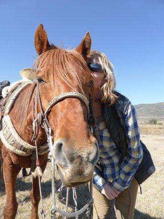 Rancho Las Cascadas - All Inclusive Boutique Resort: Amber
