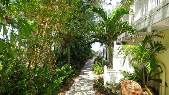 Anna Maria Island Beach Resort : Building side closest to beach