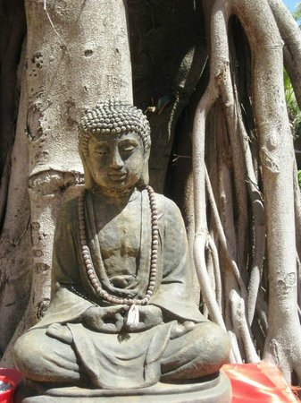 Jardín-Museo del Bonsái: Buddha statue