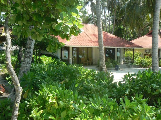 Club Med Kani : bungalow club
