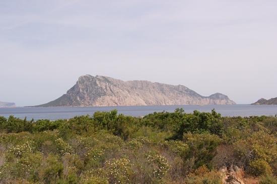 Grande Baia Resort & SPA: seaview close to the resort