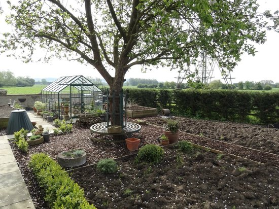 Avon Lodge B&B: Le potager