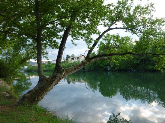 Camping Millau Plage : Le Tarn en bordure du camping