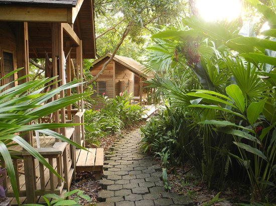 Hotel Chillies: the path to the room