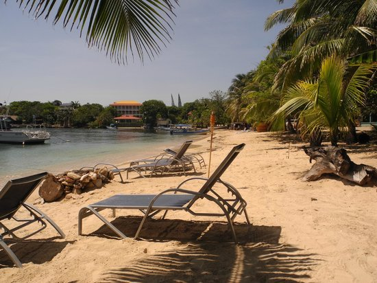 Hotel Chillies: The beach