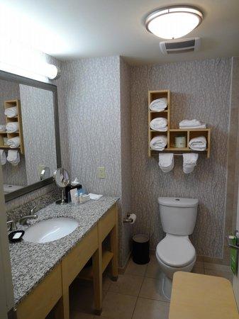 Hampton Inn & Suites by Hilton - Miami Brickell Downtown: Banheiro