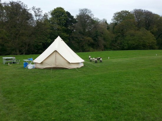 Walkmill Campsite : Tent area down by the river