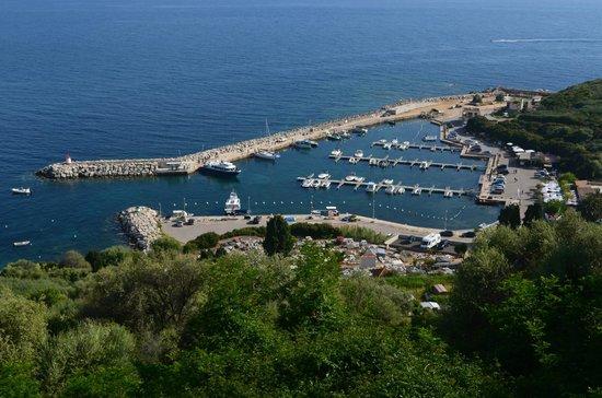 Restaurant A Volta: Port de Cargèse