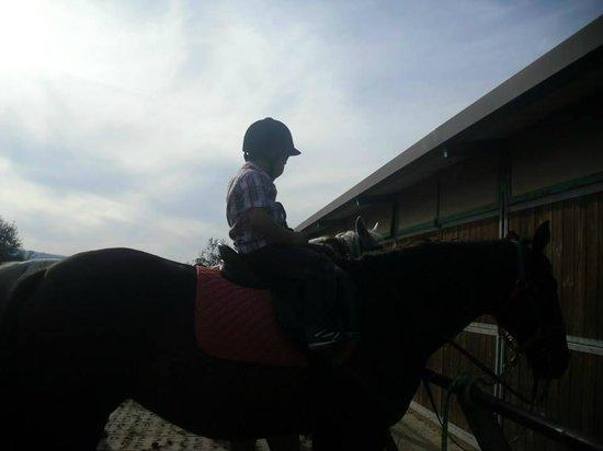 Az Agr Il Vecchio Maneggio : a cavallo!!!