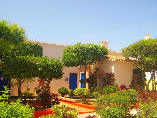 Marbella Playa Hotel: autour de l'hôtel