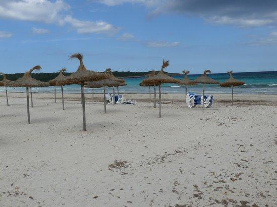 HSM Club Torre Blanca: Strand von Sa Coma