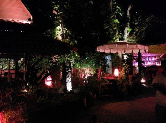 John's Garden : .