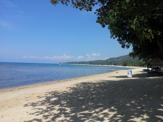 Seaview Paradise Resort Hotel: Beach View