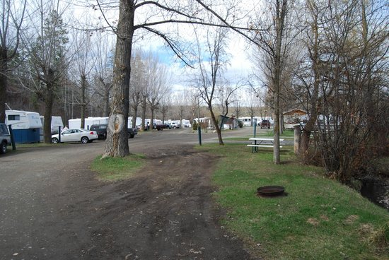 Kamloops RV Park: Grounds
