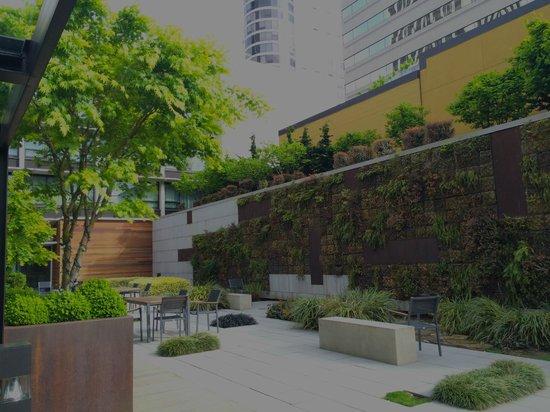 Hotel Modera: Wall Garden and Courtyard