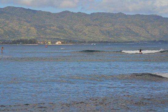 Surf Hawaii Surf School: Surfing in Haleiwa