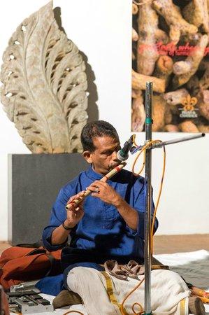 Malabar House : Musician at dinner
