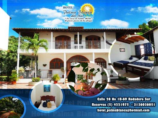 publicidad fotograf a de hotel palma blanca santa marta