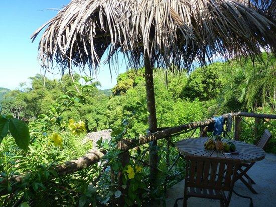 Le Relais Forestier: Vue depuis la terrasse de la chambre