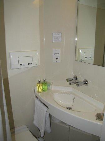 Bay Horse Inn: small bathroom