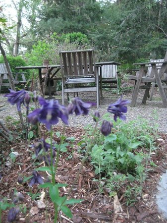 At Cumberland Falls Bed and Breakfast Inn: Garden seating in back