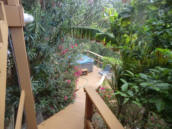 Gecko House : Hot Tub in the garden