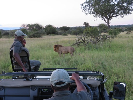 Notten's Bush Camp: Gideon and Tinyko relax after tracking down a lion.