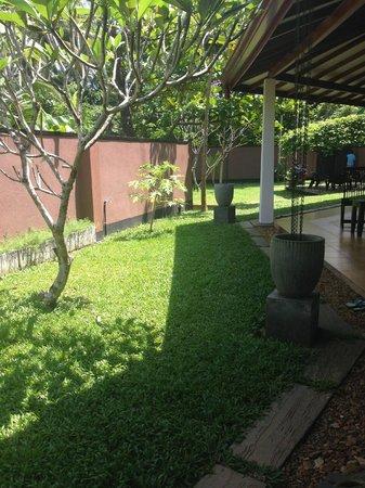 Sophie House: Trädgård