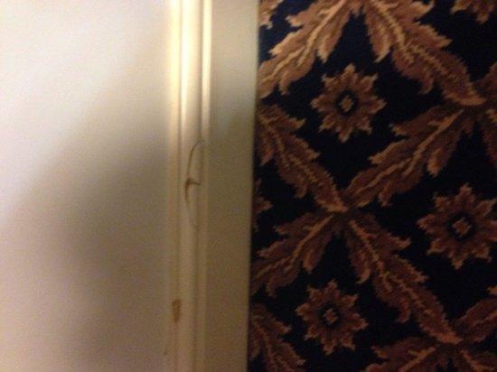 Botleigh Grange Hotel: Cracked skirting boards