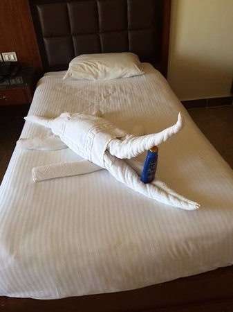 Aqua Blu Sharm: another towel animal