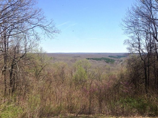 Brown County State Park : Scenic View