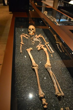 Vasa-Museum: One seafarer who couldn't be saved alive