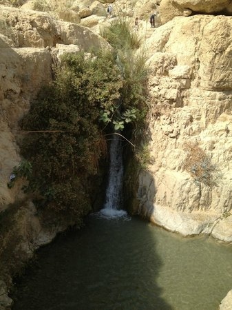 En Gedi Nature Reserve: waterfall
