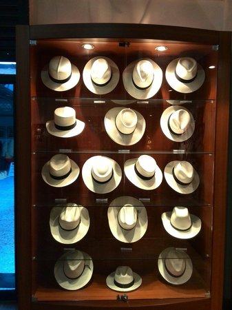 Homero Ortega: Tipos de sombreros