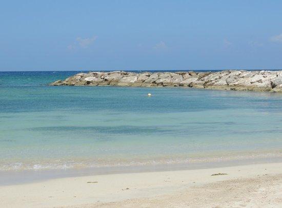 Grand Palladium Jamaica Resort & Spa: Vista desde uno de los comedores