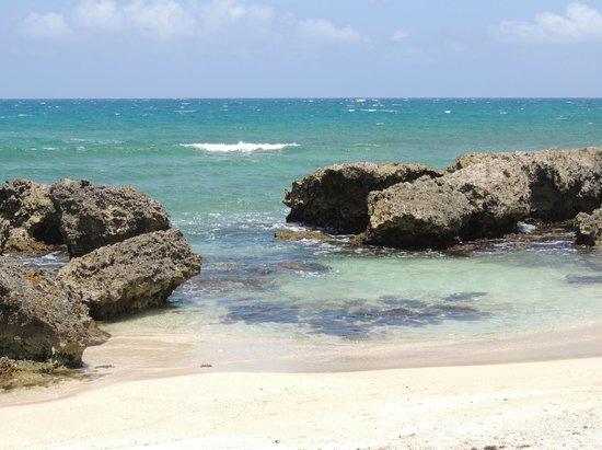 Grand Palladium Jamaica Resort & Spa: Una màs
